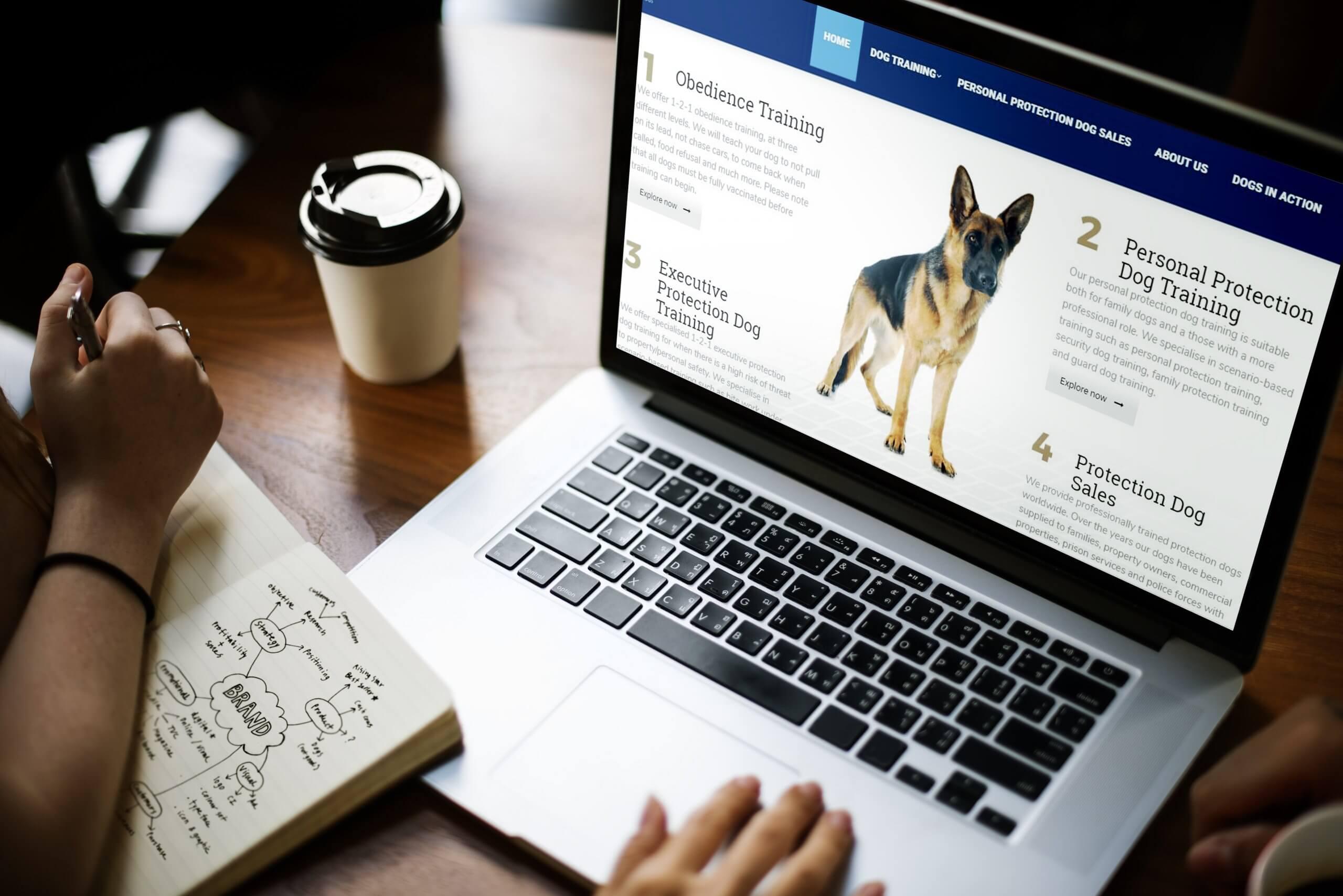 Marketing Case Studies | Web Design Bradford 1